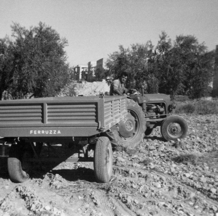Modello TR 30 (anno 1965)